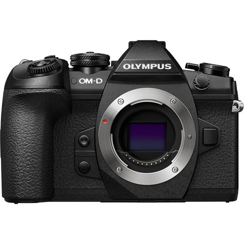 *Olympus OM-D E-M1 Mark II - This micro 4/3 camera is waterproof. It has some challenges in low light.