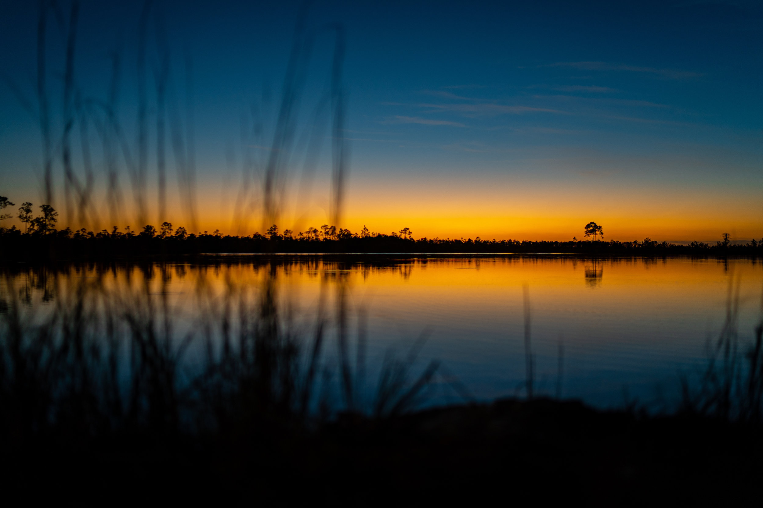 Landscapes by Jason Lanier Photography-Everglades Sunset-0004.jpg