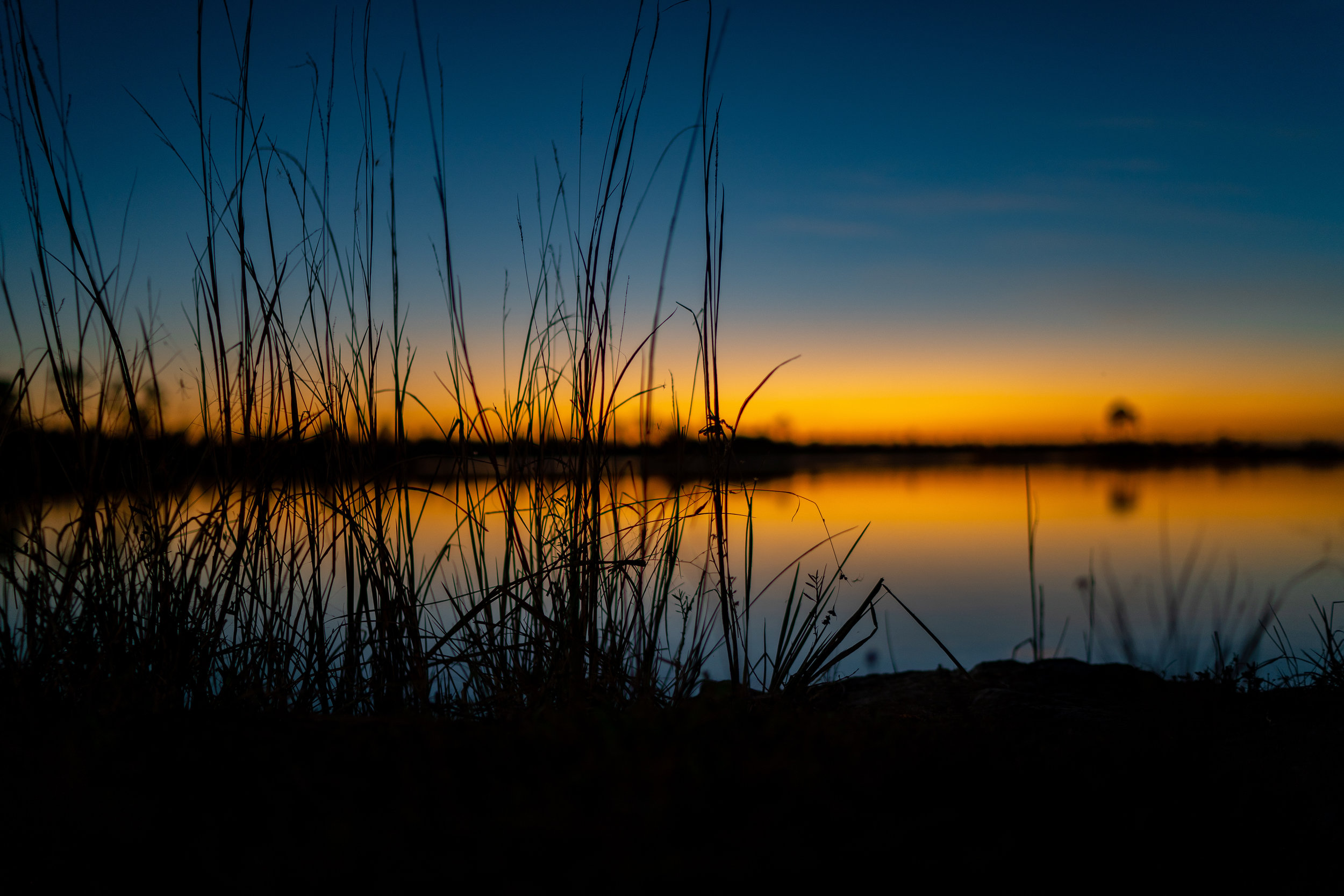 Landscapes by Jason Lanier Photography-Everglades Sunset-0003.jpg