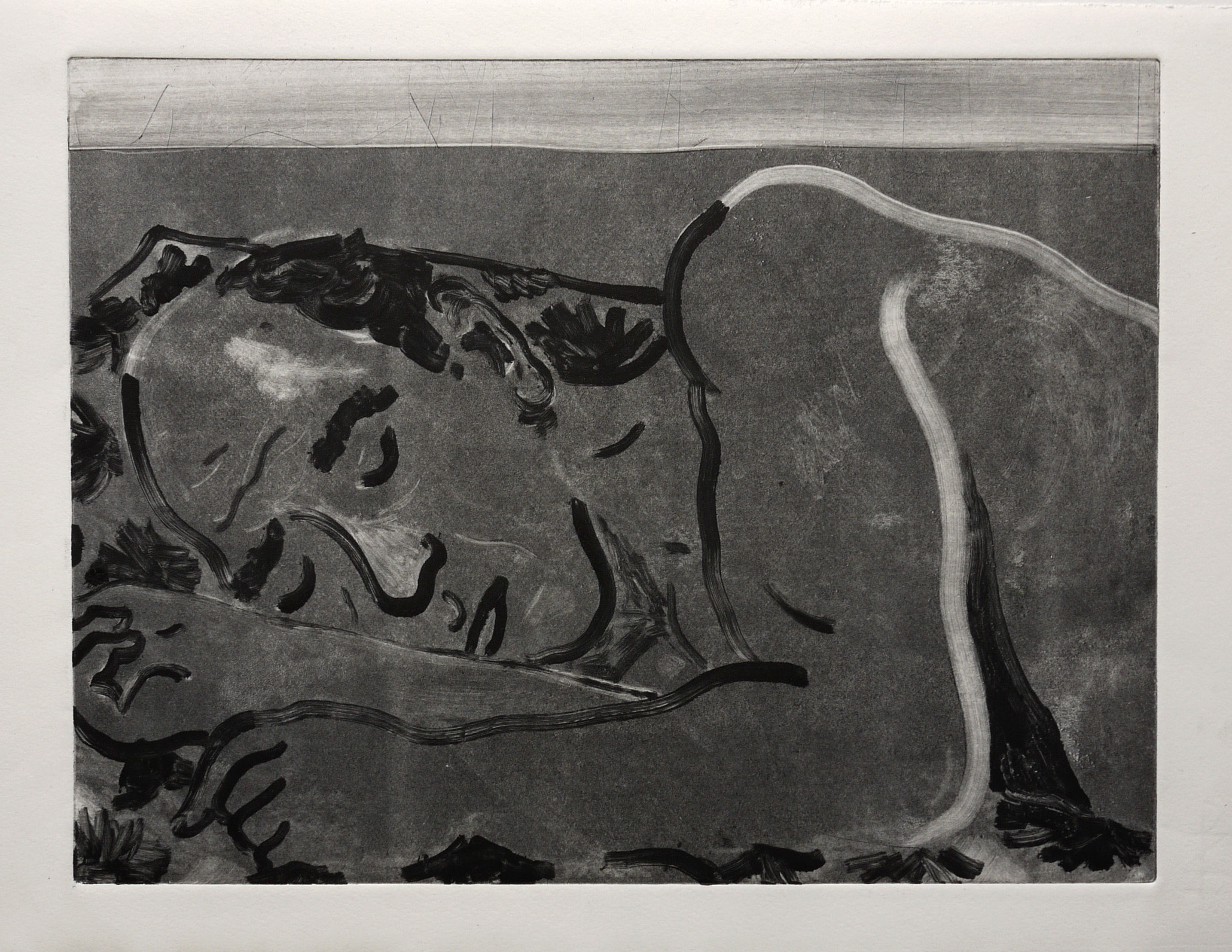 Monoprint on Paper.38x27cm. 2015.