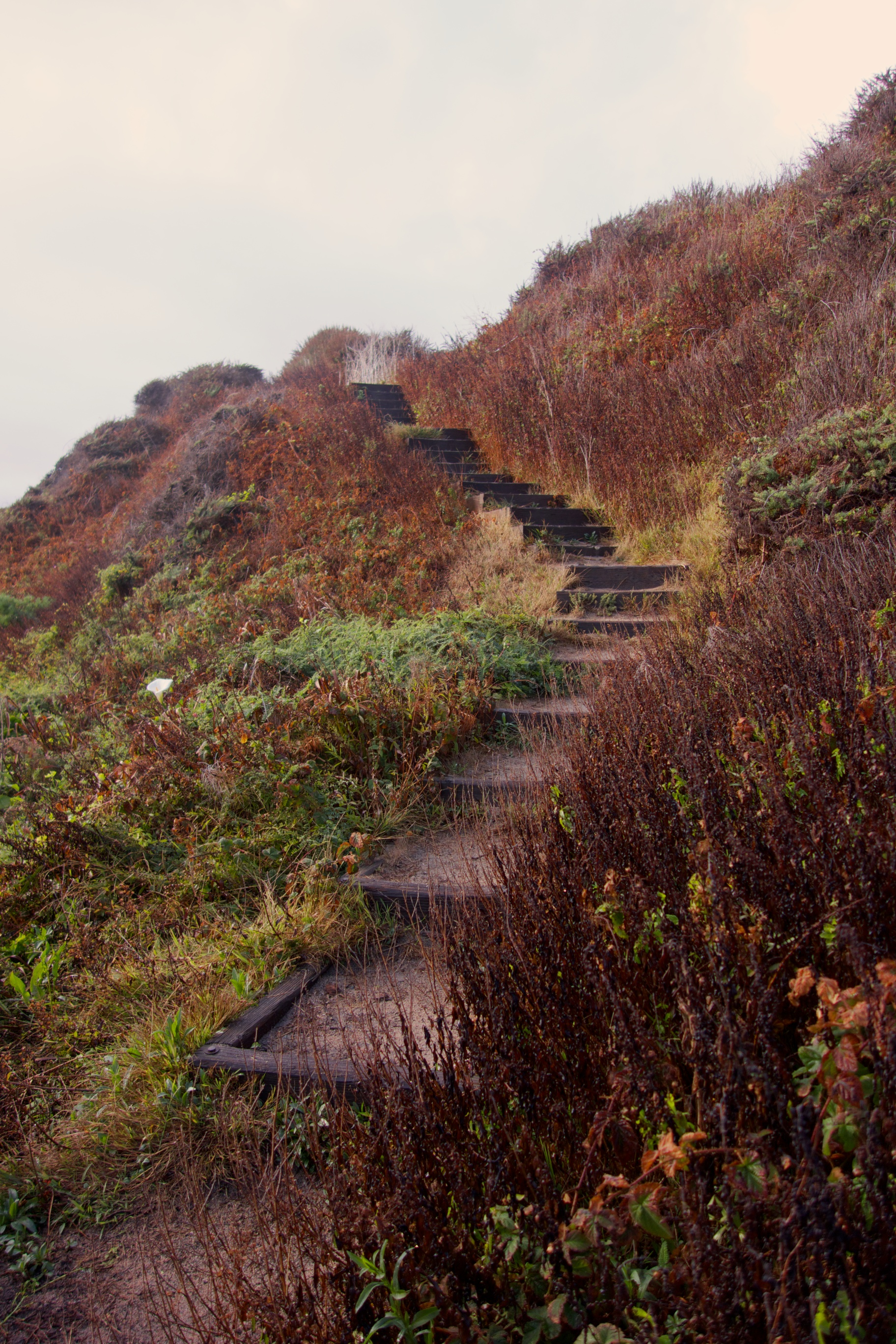→ Stairway to heaven? A drizzly day in Big Sur.