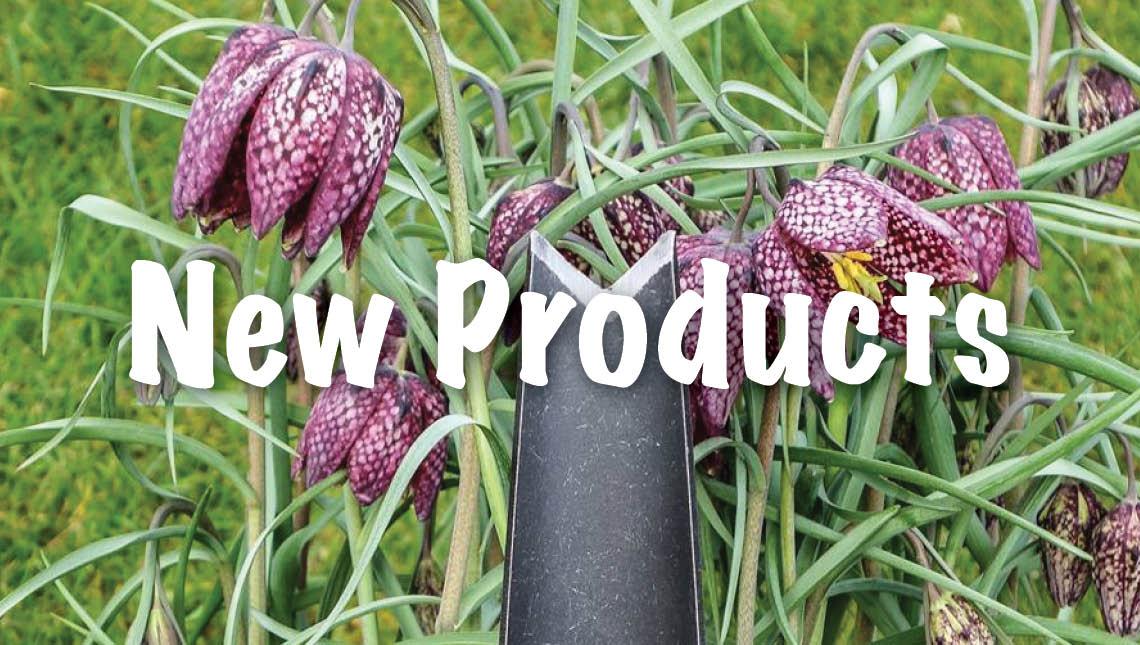 Tierra Garden DeWit Junior Tools.jpg