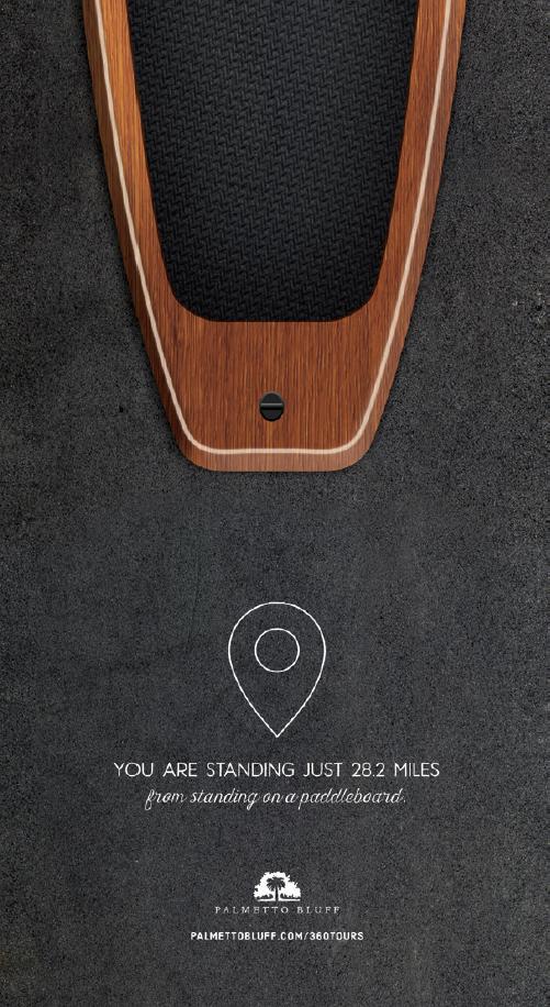 Paddleboard_belt2.png