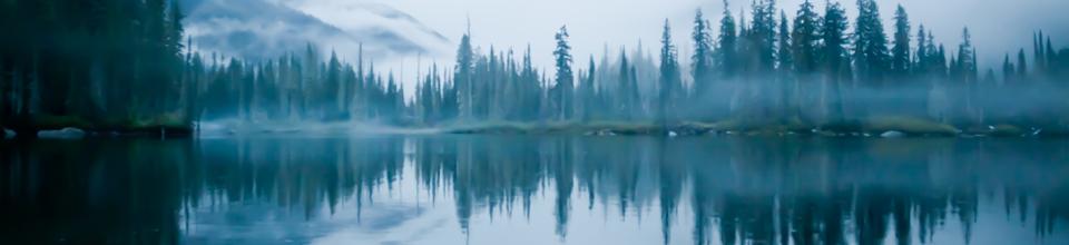 header_wading river2.jpg