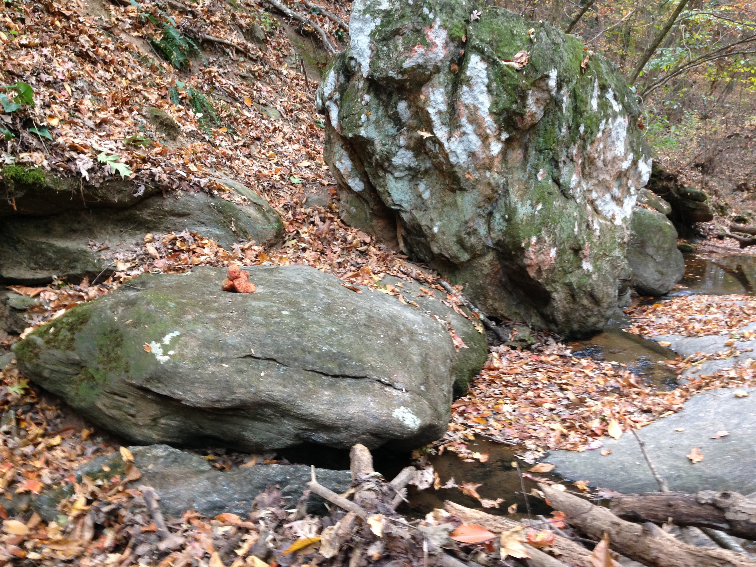 Stones wrapped in yarn on boulder. Athens, GA. Fall 2013