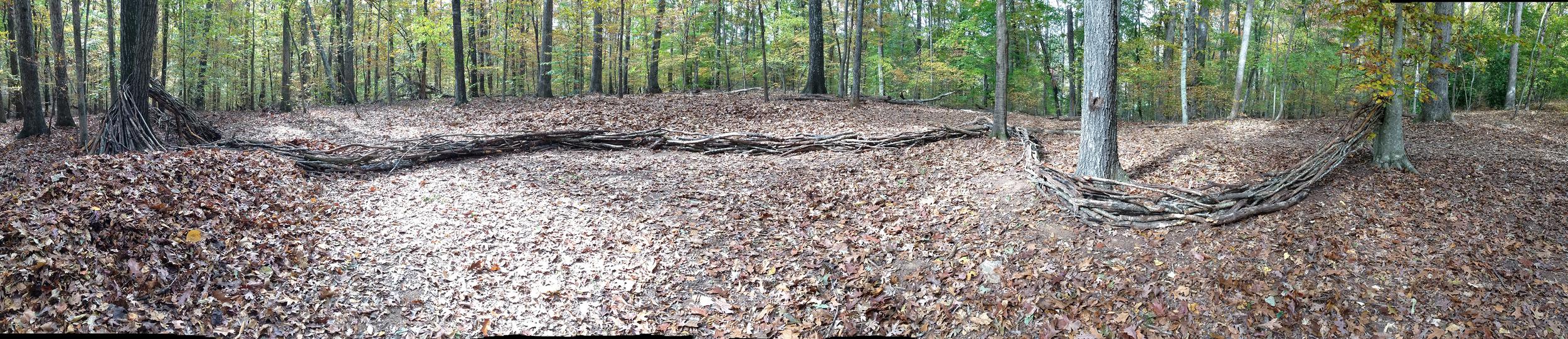 Wooden Trail. State Botanical Garden of Georgia. Athens, GA. Fall 2013