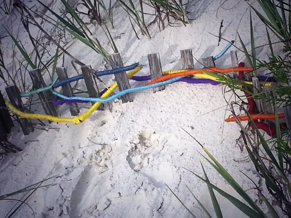 Yarn-wrapped drift wood and dune fence. Mexico Beach, FL. Summer 2013.