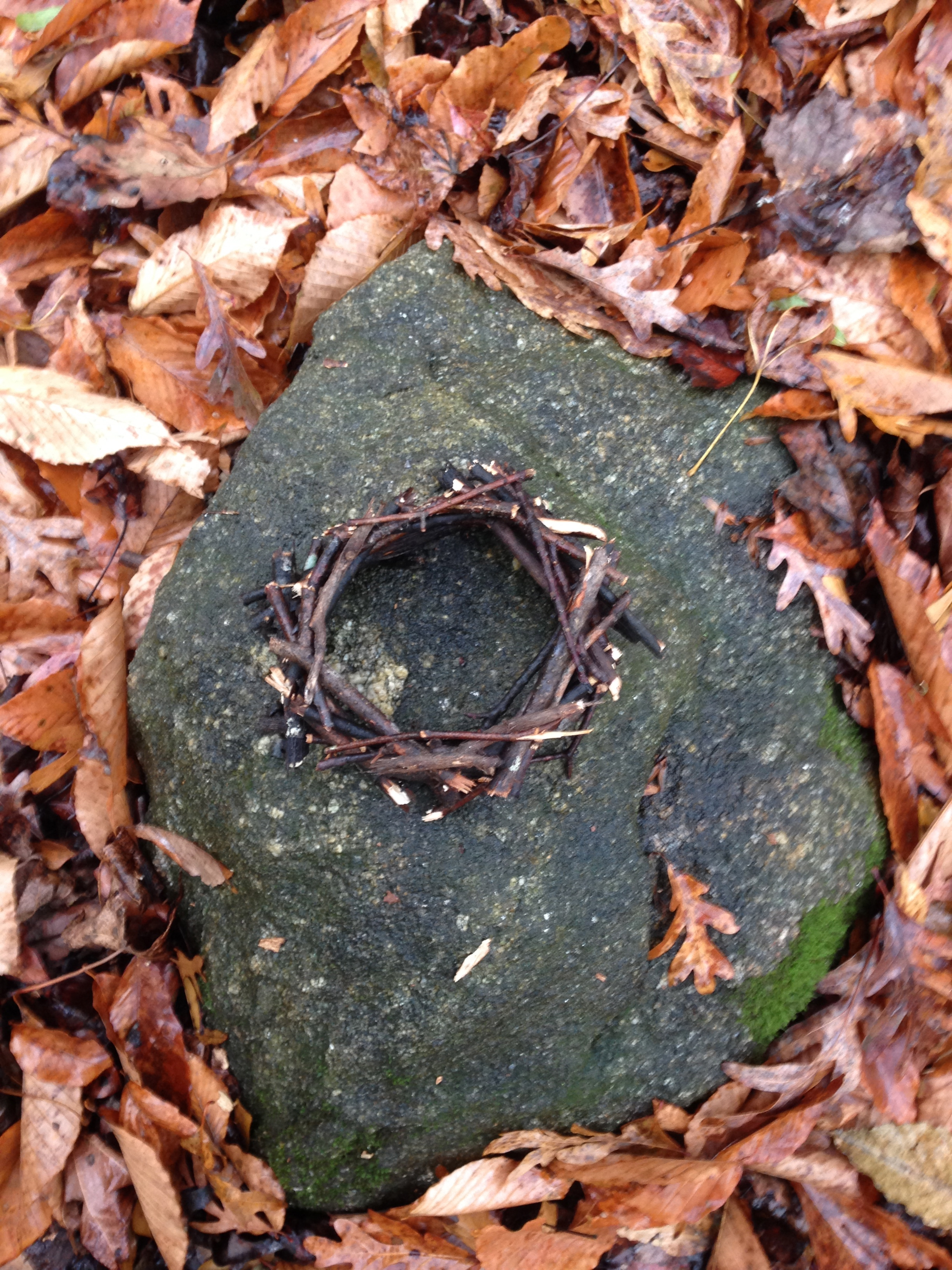 Nest on stone. Birchmore Trail. Athens, GA. Fall 2013.