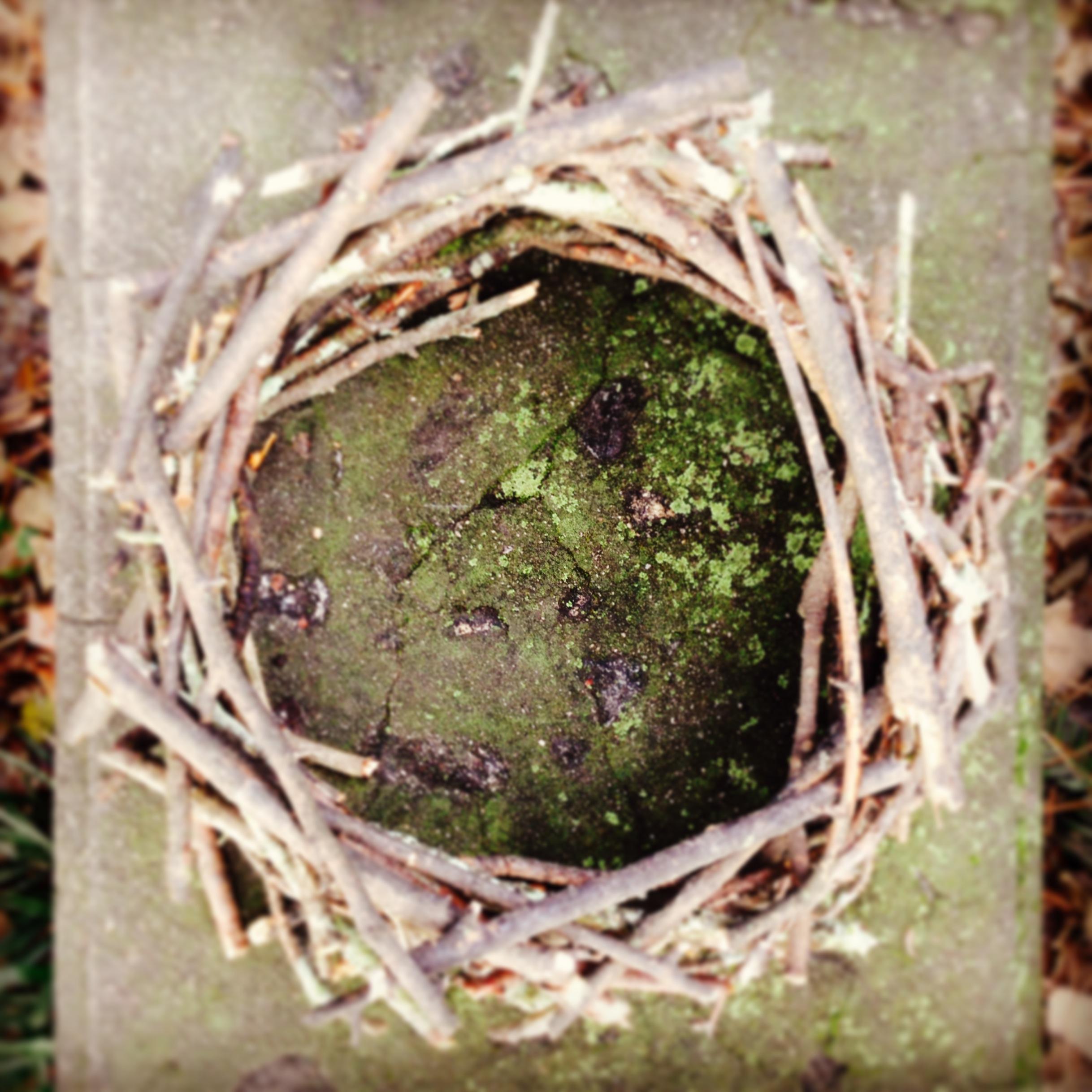 Nest on Stone. Garden Club of Georgia Founder's Garden. Athens, GA. Fall 2013