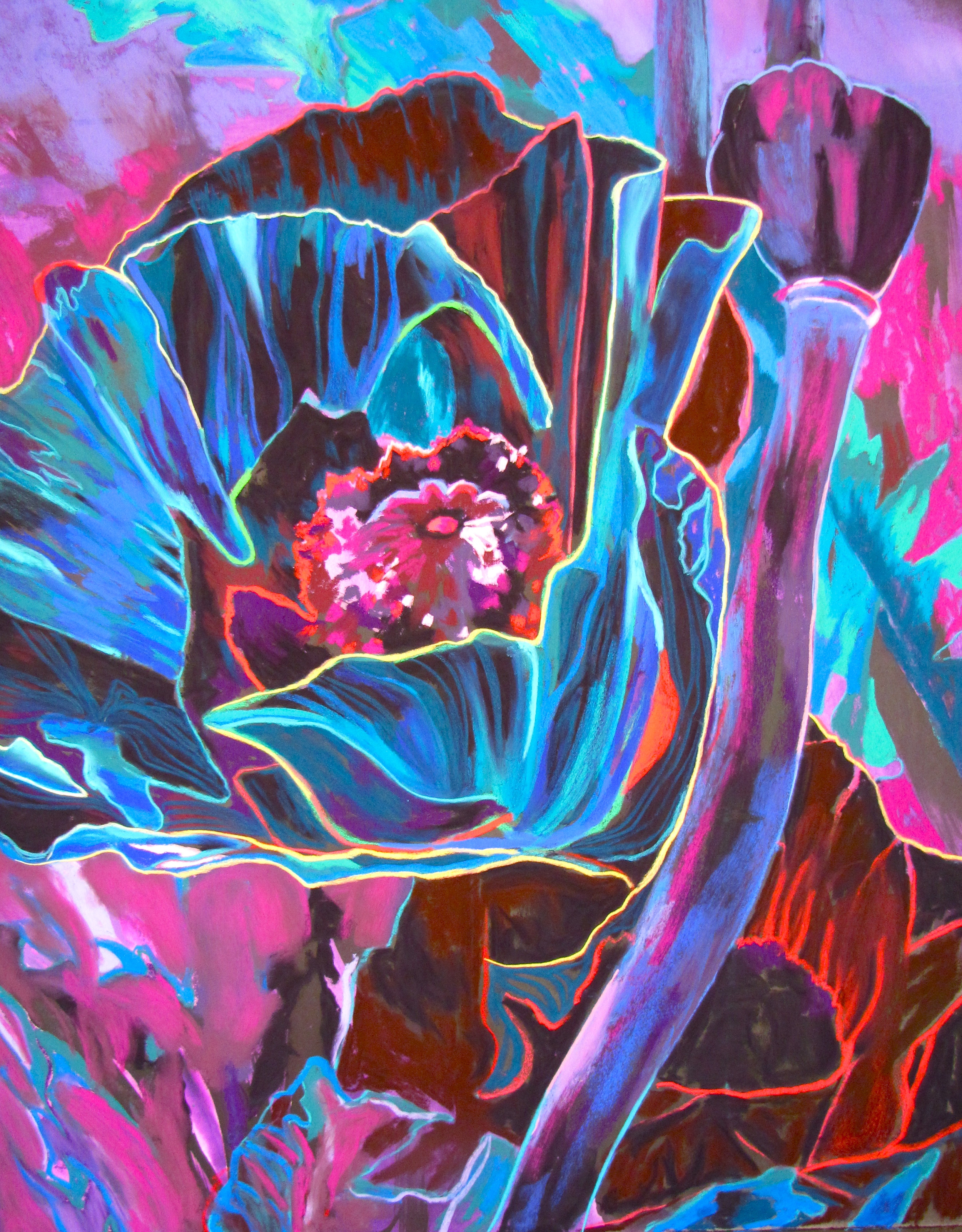 Magical Poppies.jpg