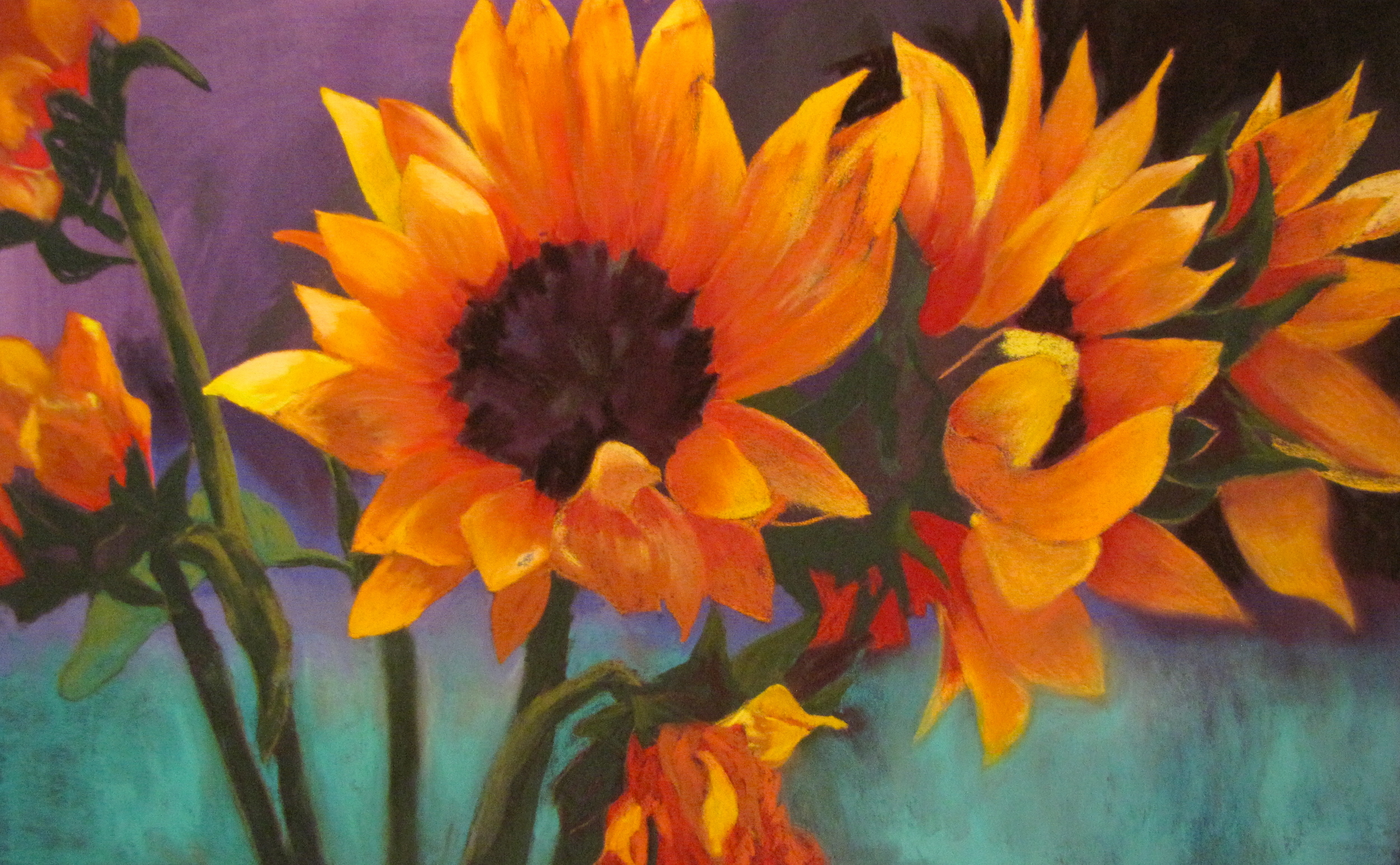Sunflowers in Sea Mist.JPG