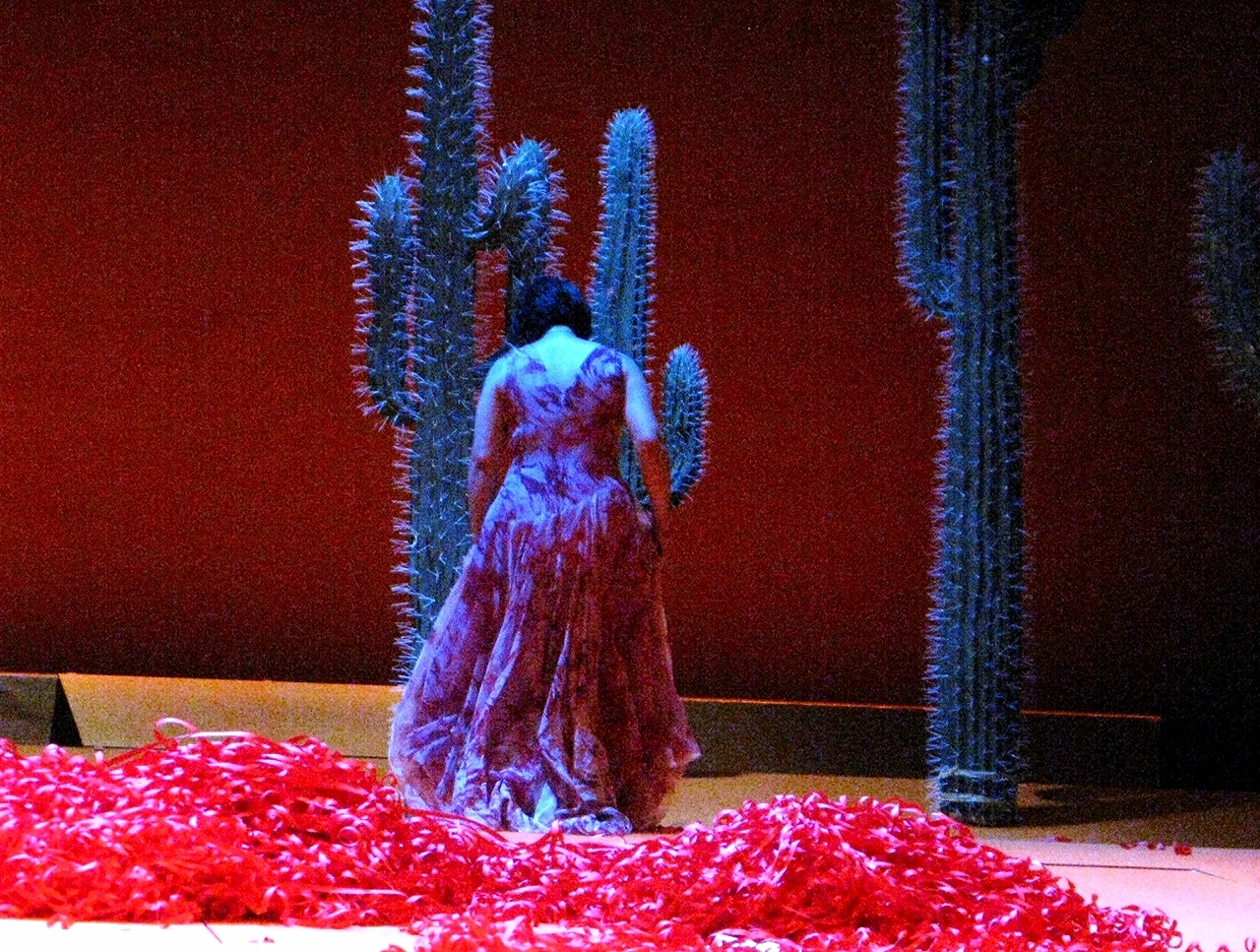 """Aida"" Amneris: Yanyu Guo"