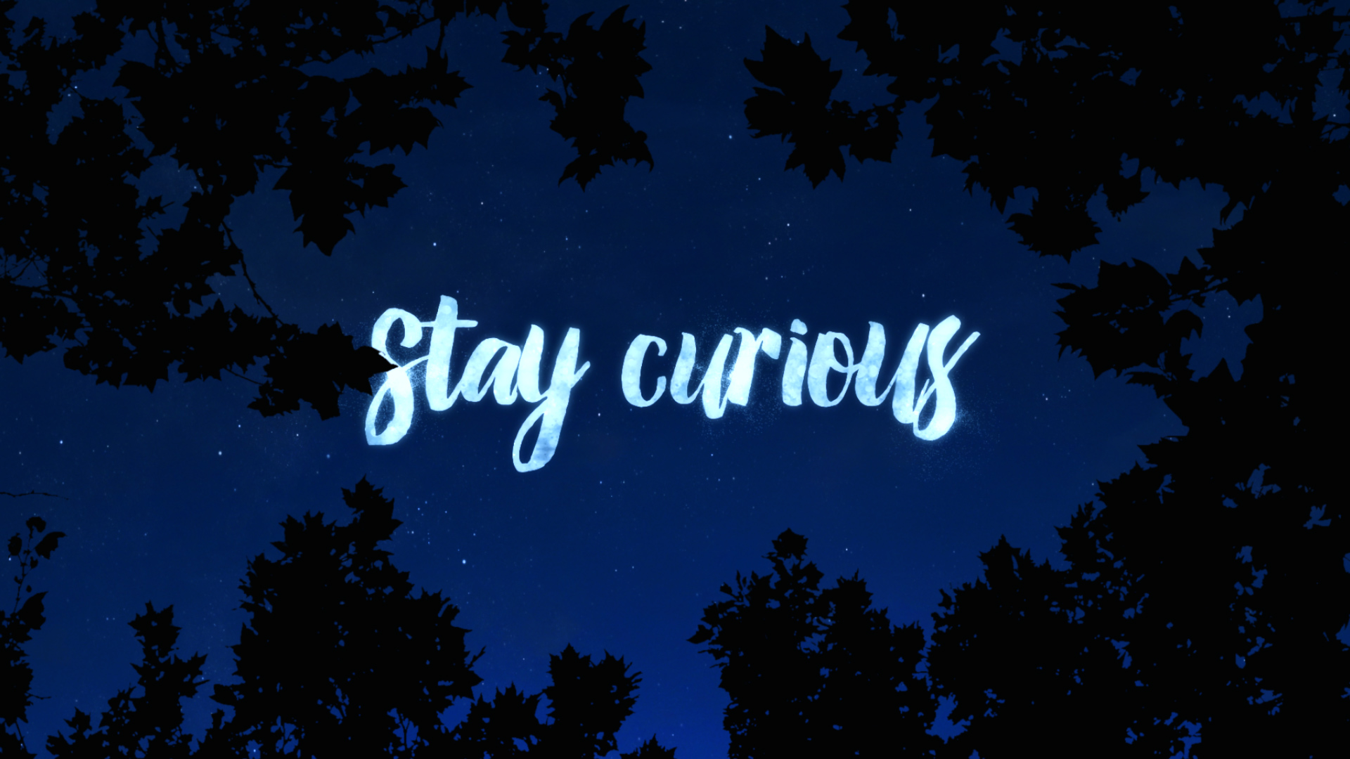 Stay Curious_12.jpg