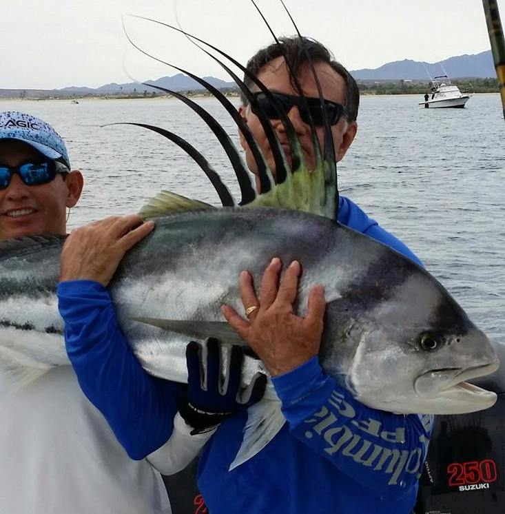 Roosterfish, pargo, sierra and pacific jacks are just a few of the species that one can expect to catch on an action filled day fishing close to shore.