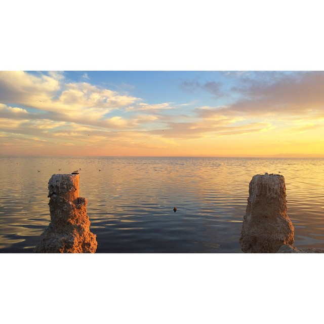 Salton sea. #Octothorpe #hashtag