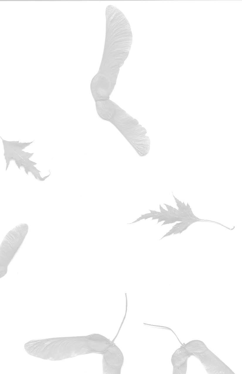 LONGWALKSURVIVALGUIDE_2012FINAL10_Page_02.jpg