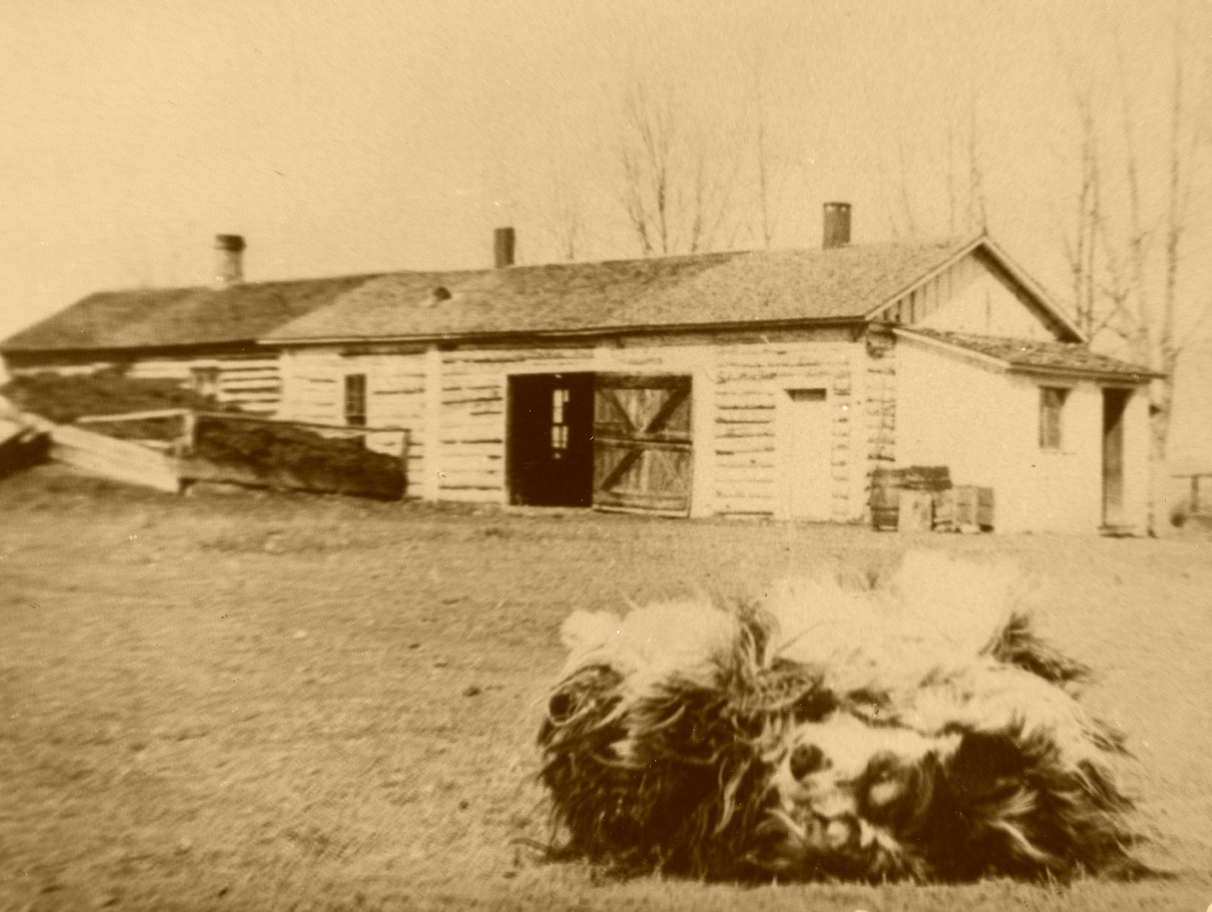 The Bunk House, 1892