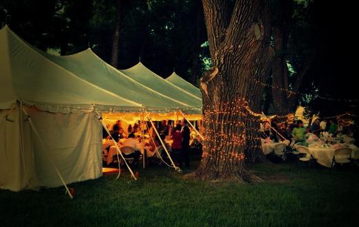 Tent Grove at Night.jpg