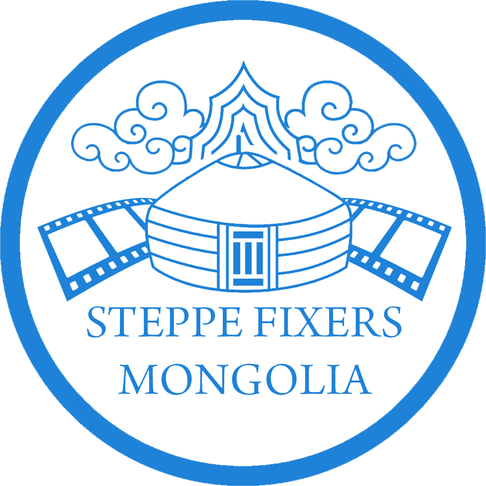 Copy of Steppe Fixers