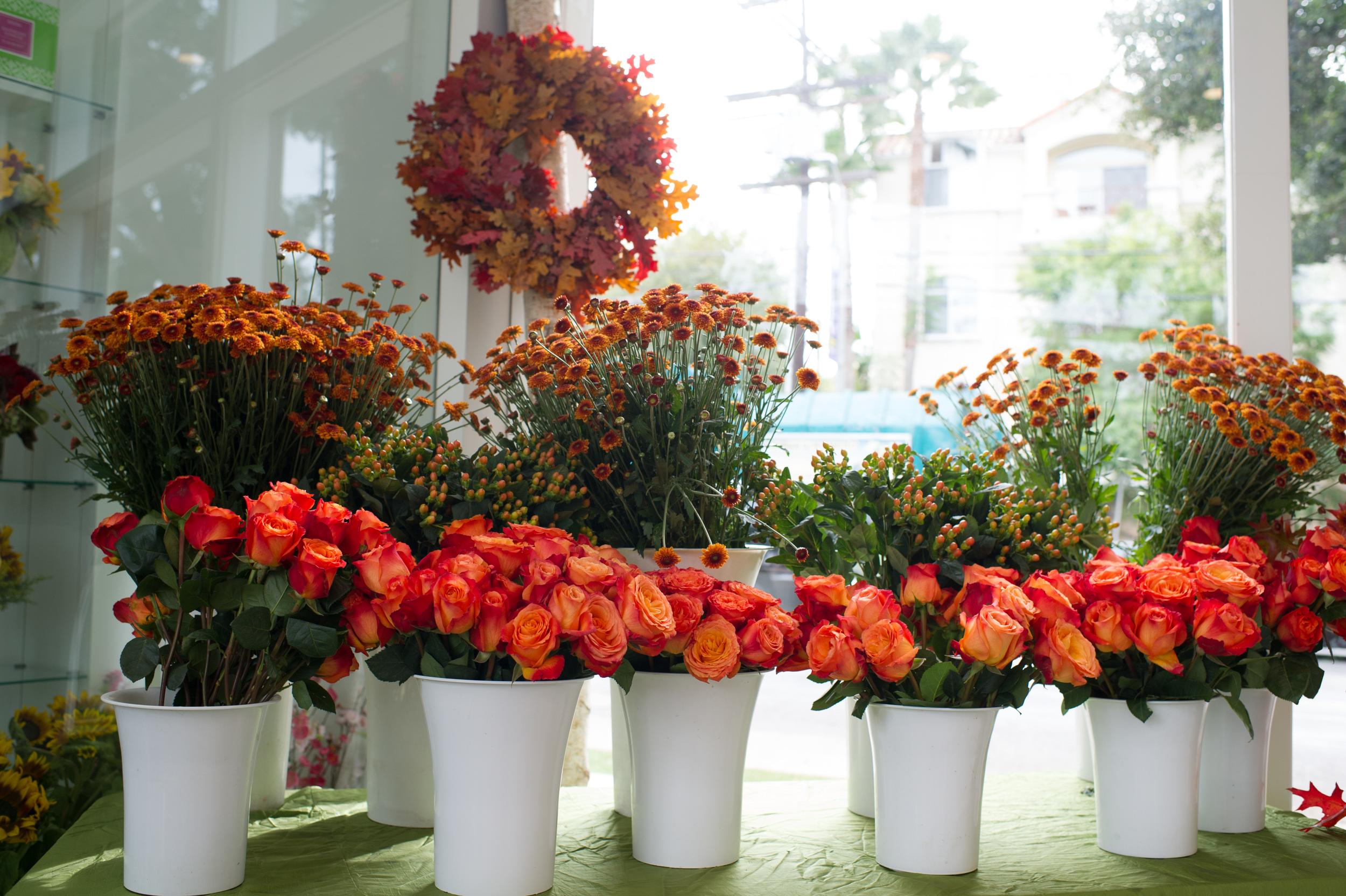 fleurish design studio