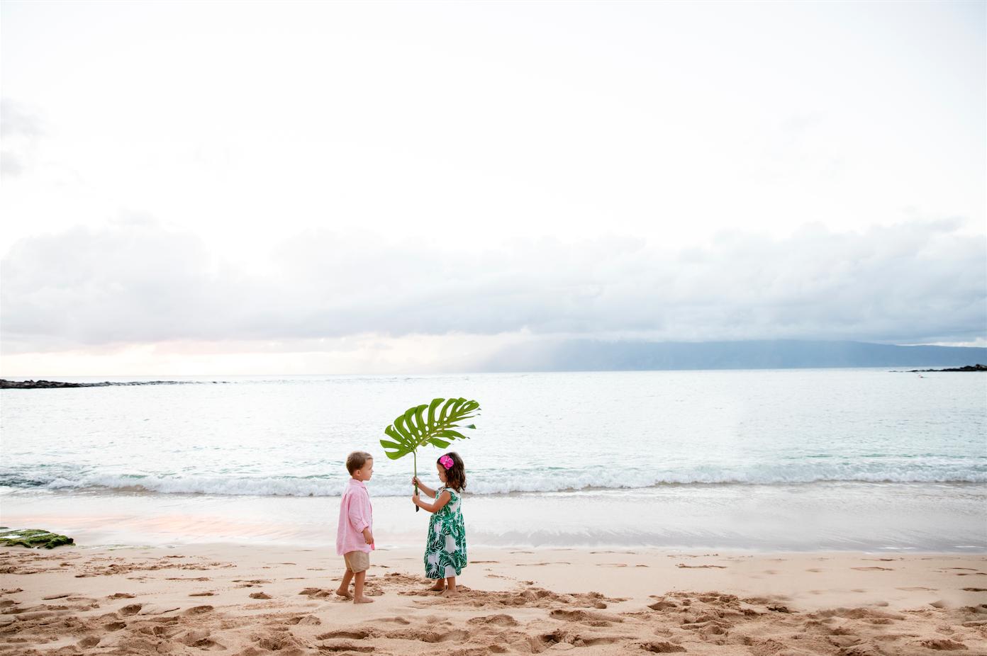 maui family vacation guide
