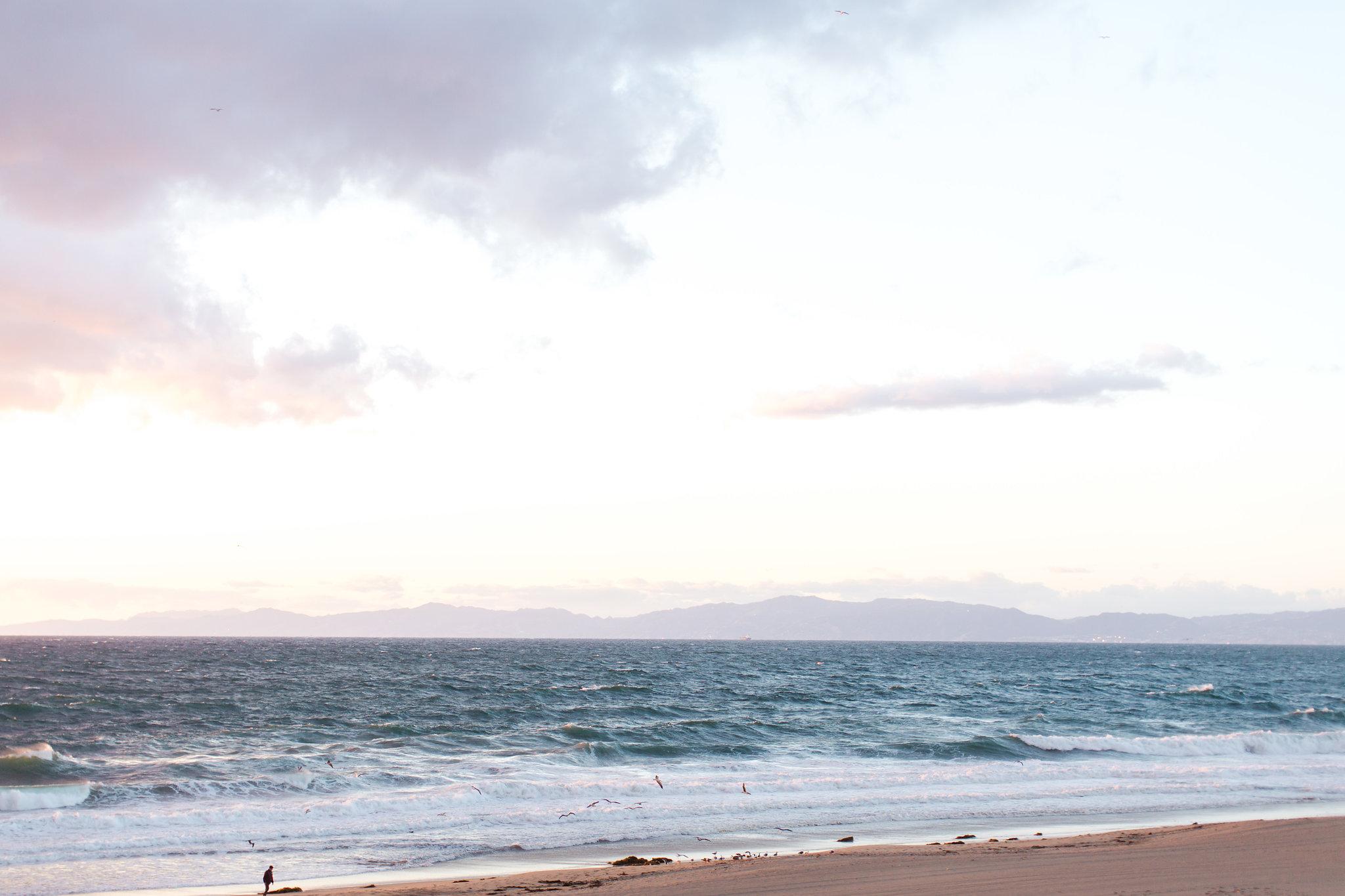 south bay torrance beach