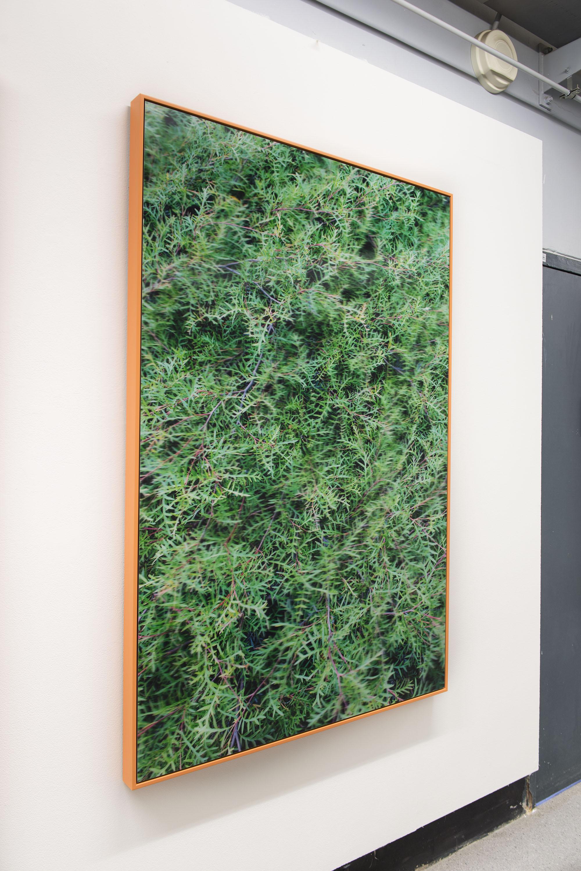 Nervous system , pure pigment on archival paper, acrylic lenticular lens, 165 x 110 cm