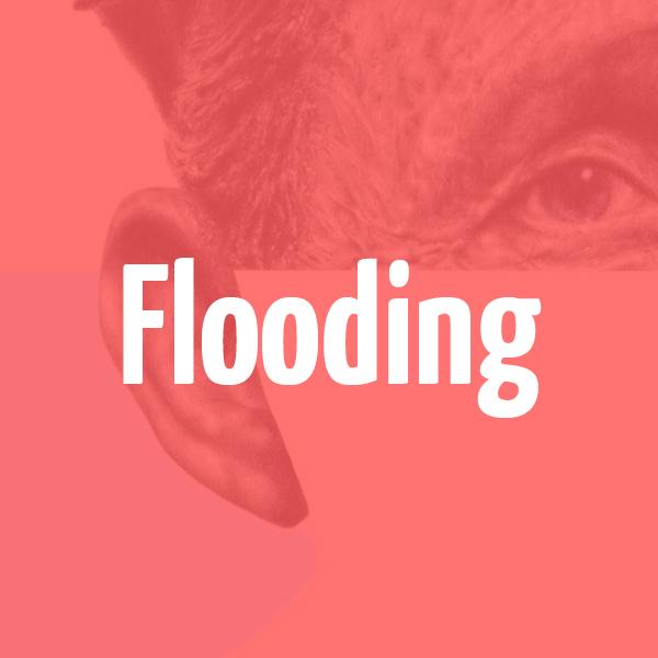 flooding_roll.jpg