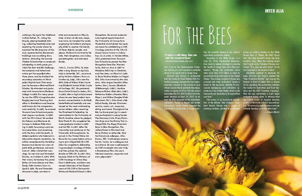 """For the Bees"" article, right side."