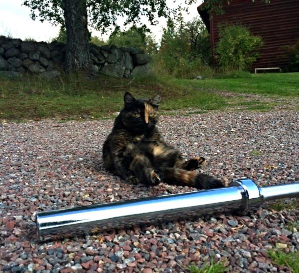 Strike a pose! PT-Greta slappar efter lite blandade småhopp med stången