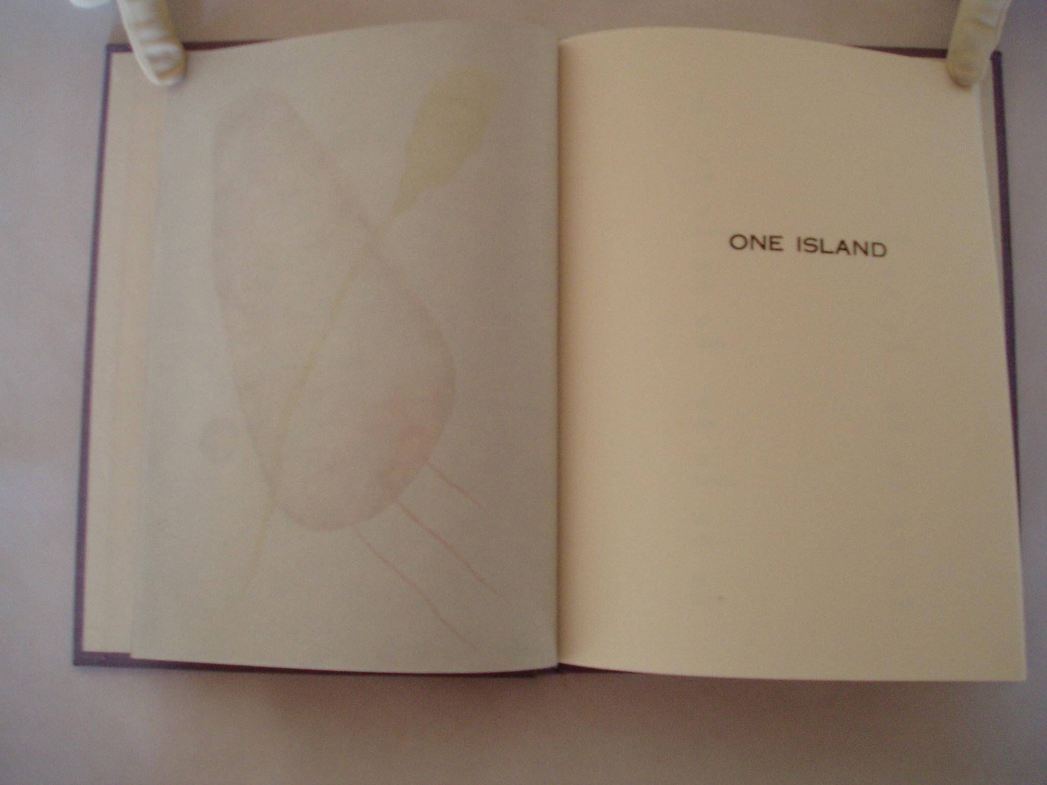 3. One Island title page.jpg