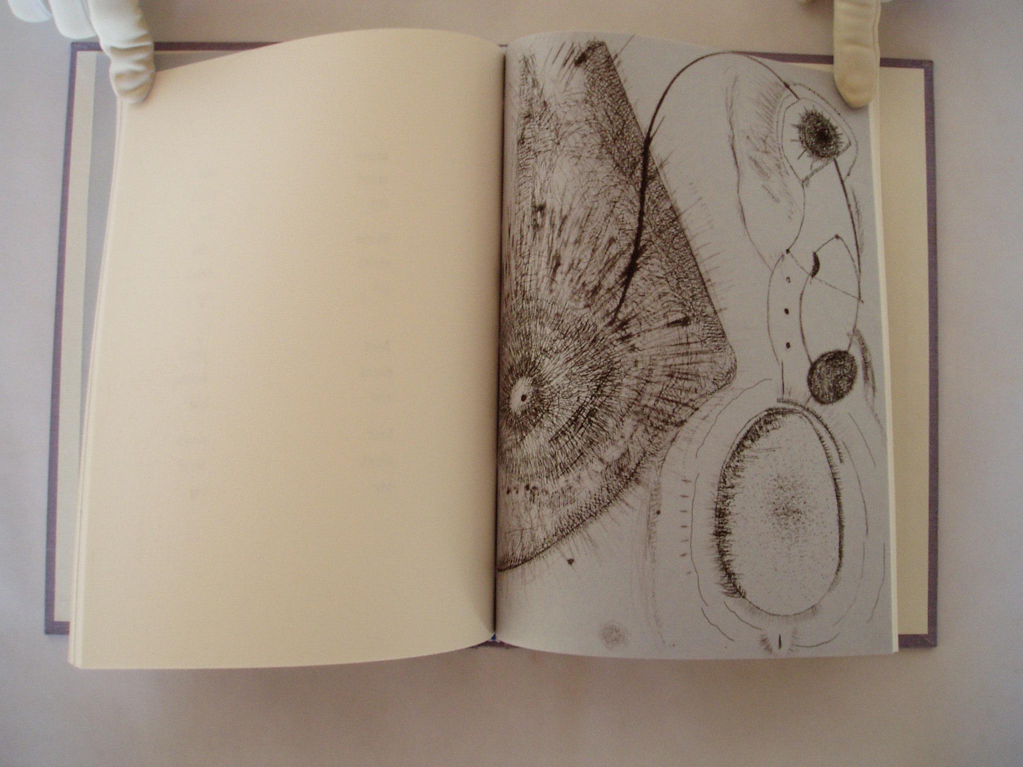 6. One Island etching II.jpg