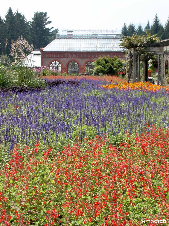 Biltmore Estate - gardens