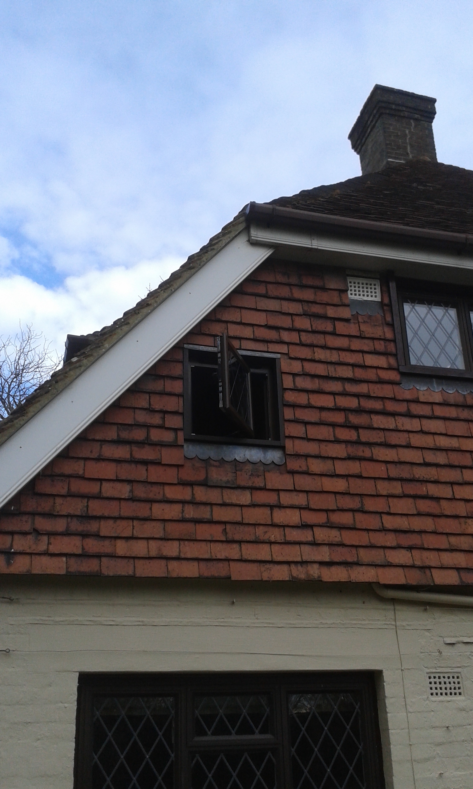 Replacement Aluminium Windows.jpg
