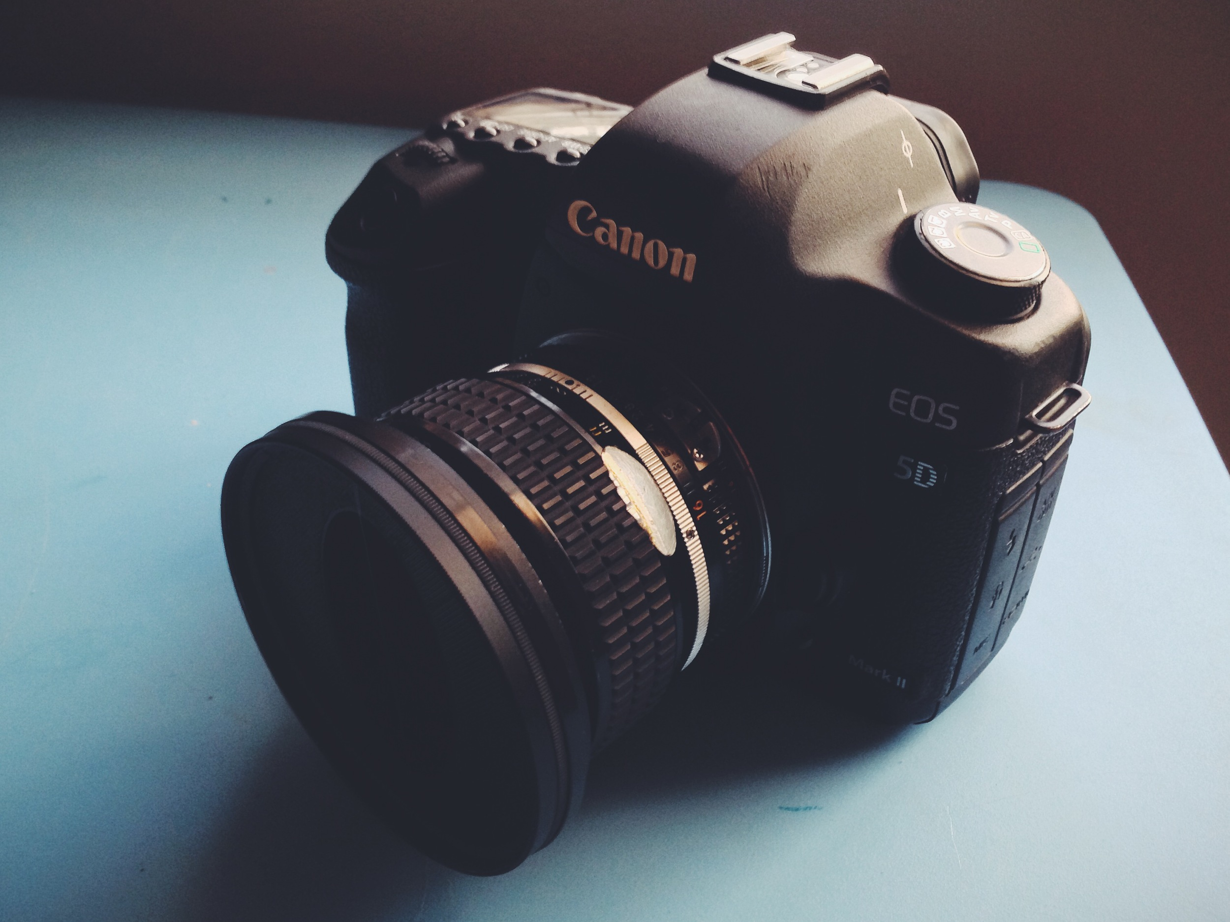 Vintage Filter on the Nikon 50mm f1.2 and Canon 5D.