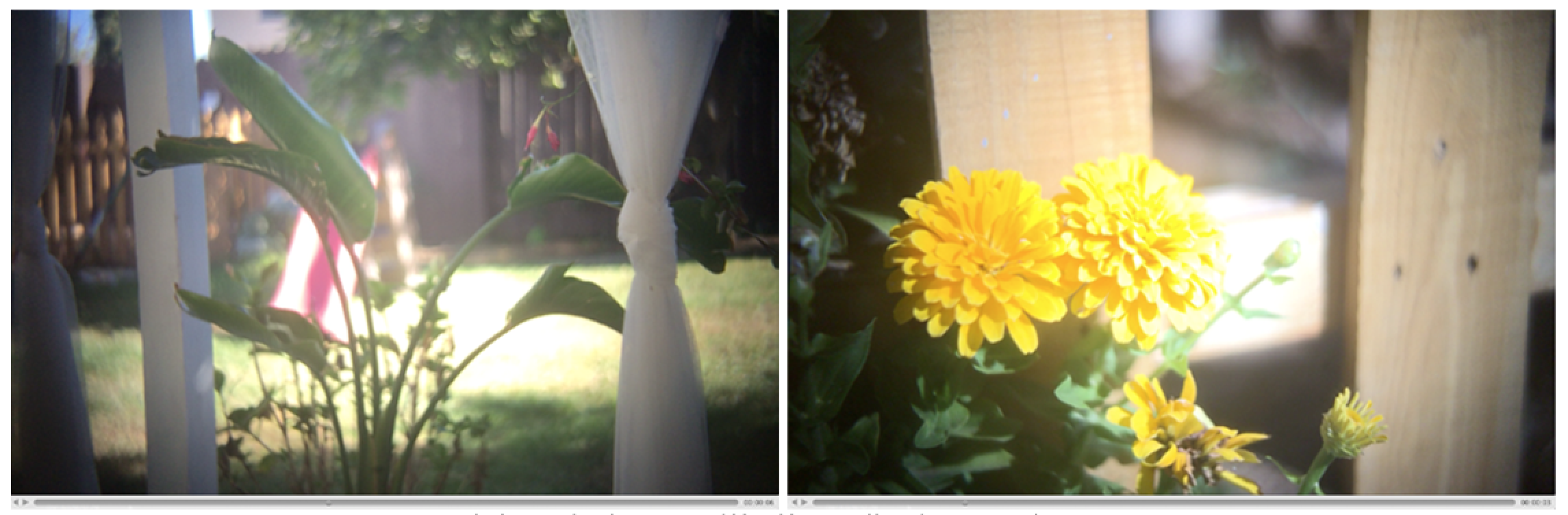 Unfiltered and un-colorgraded frame grabs from the iPhone 6 using the EnCinema SLR Lens Adapter and the  Filmic Pro app .