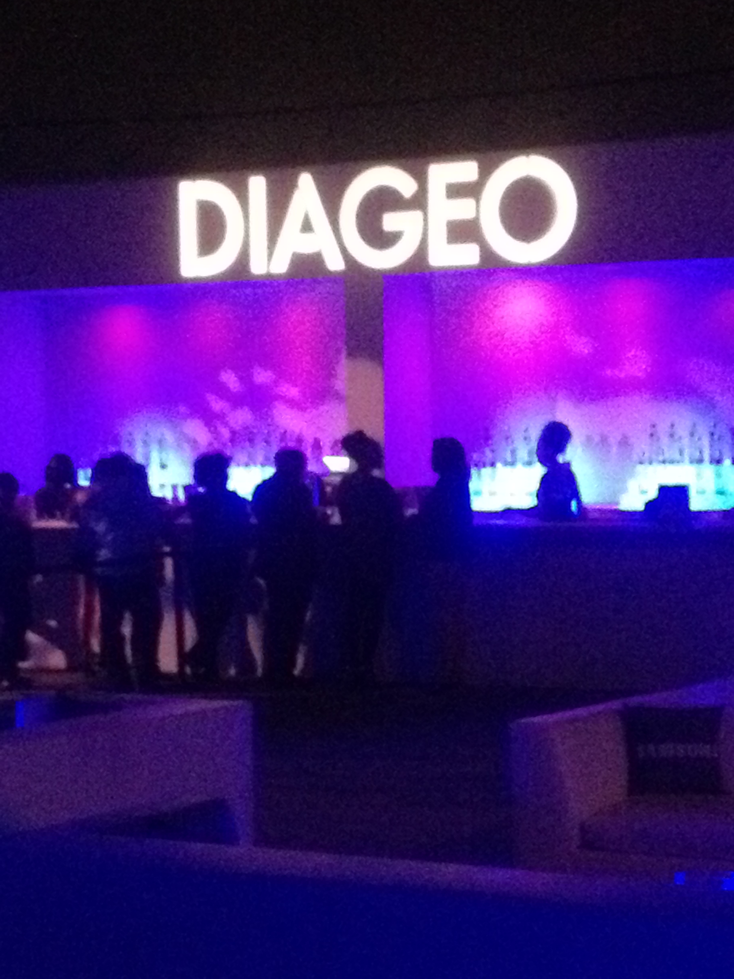 The Diageo Party