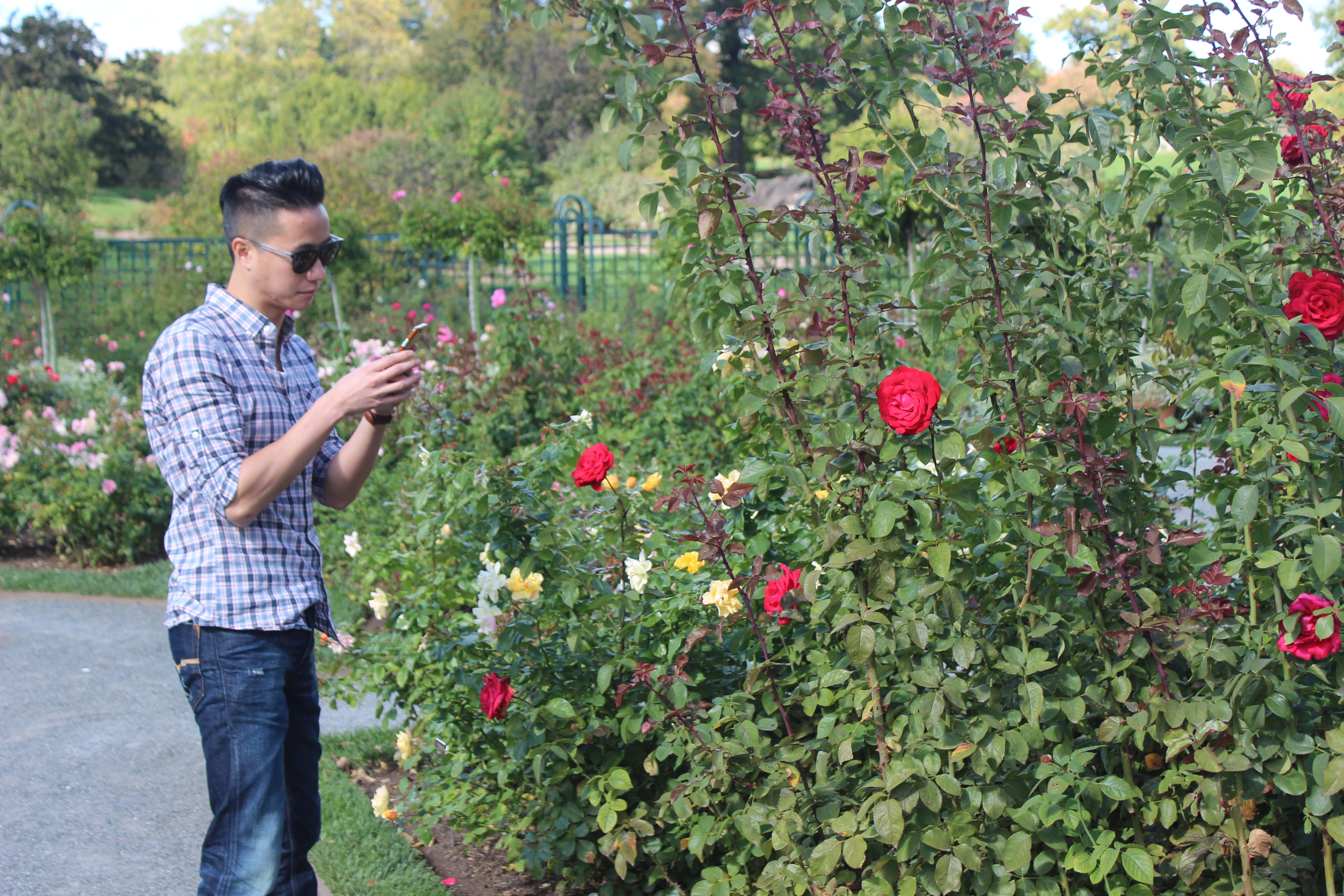 Warren checking out the roses!