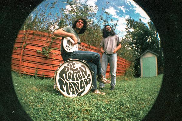 The Rotten Mangos  -  blog.jpg