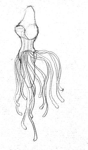 10_corsetside-copy.jpg