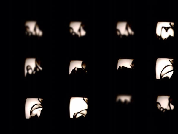 14_video-line-still42.jpg