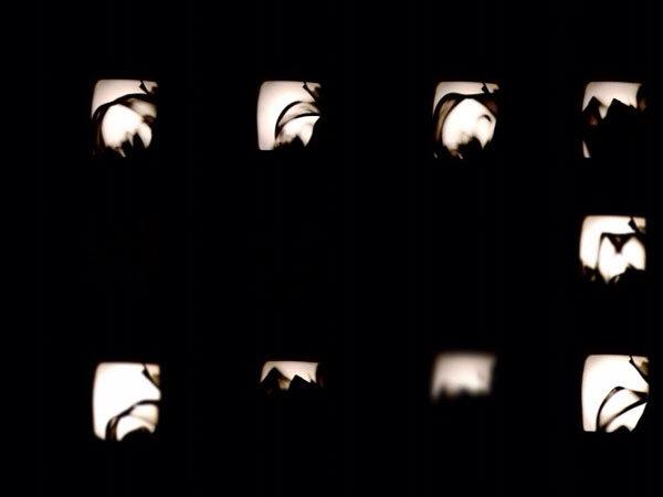 14_video-line-still43.jpg