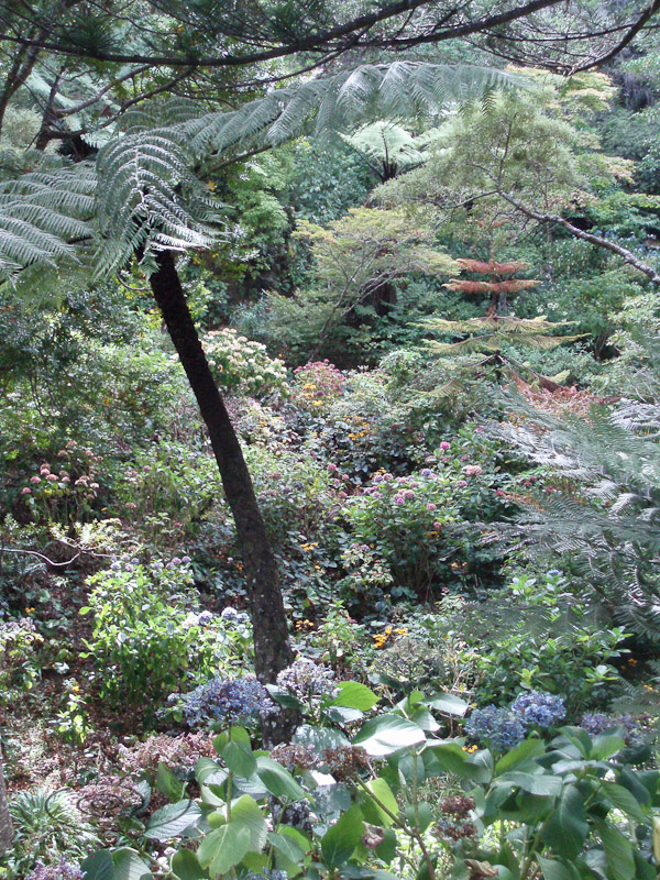 botanic garden-1.jpg