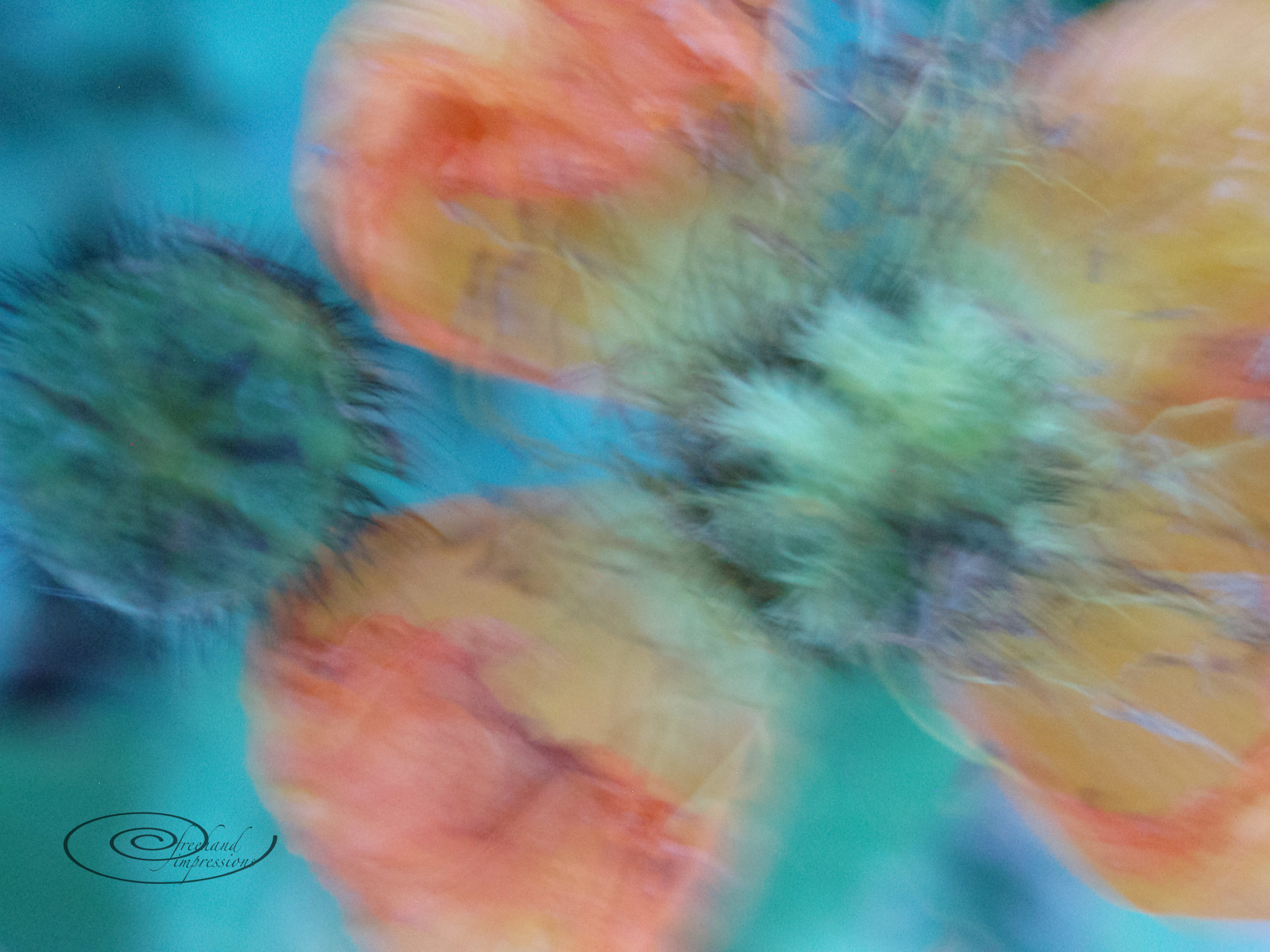 floral abstract-1.jpg