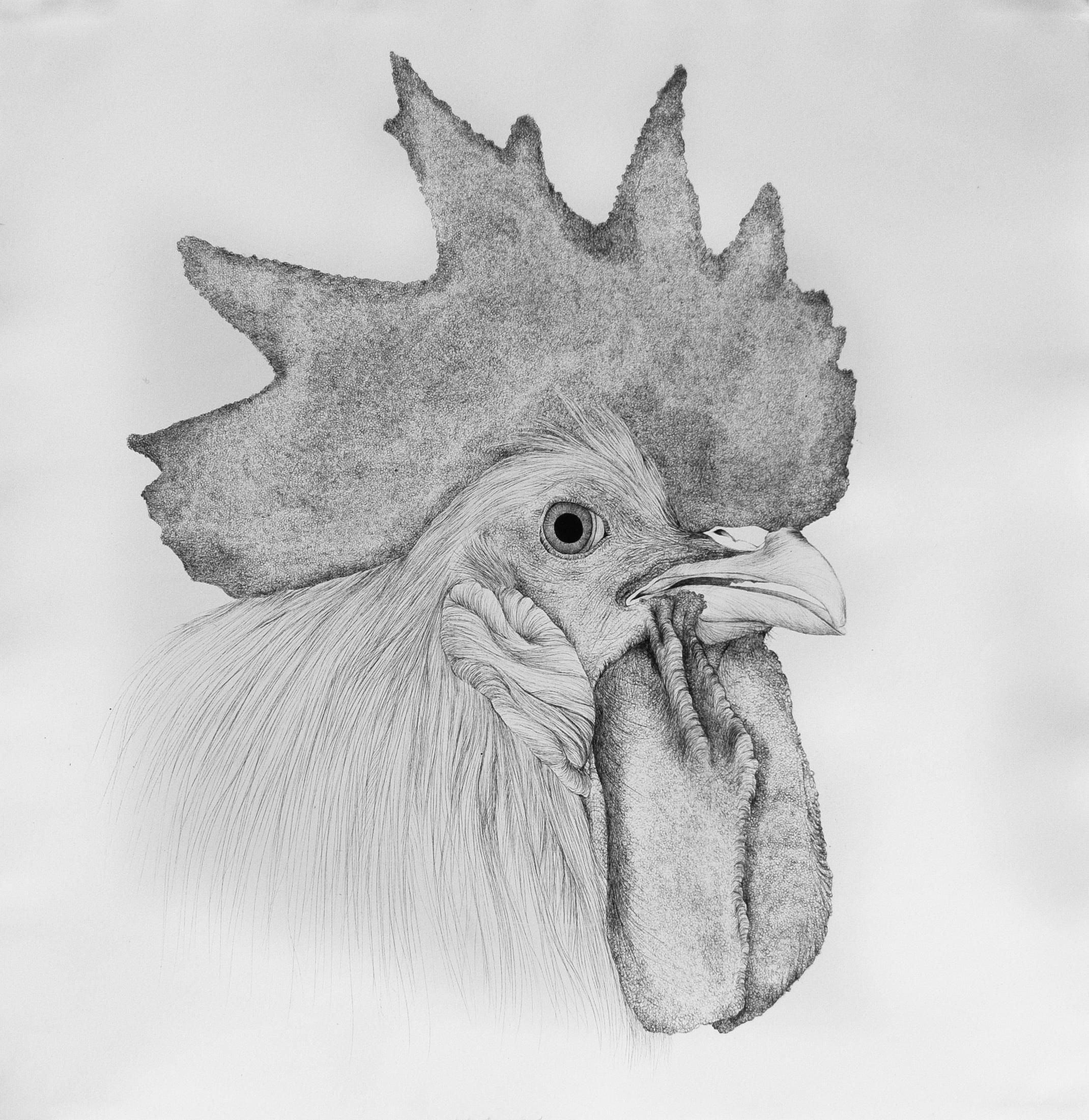 Mama Cock
