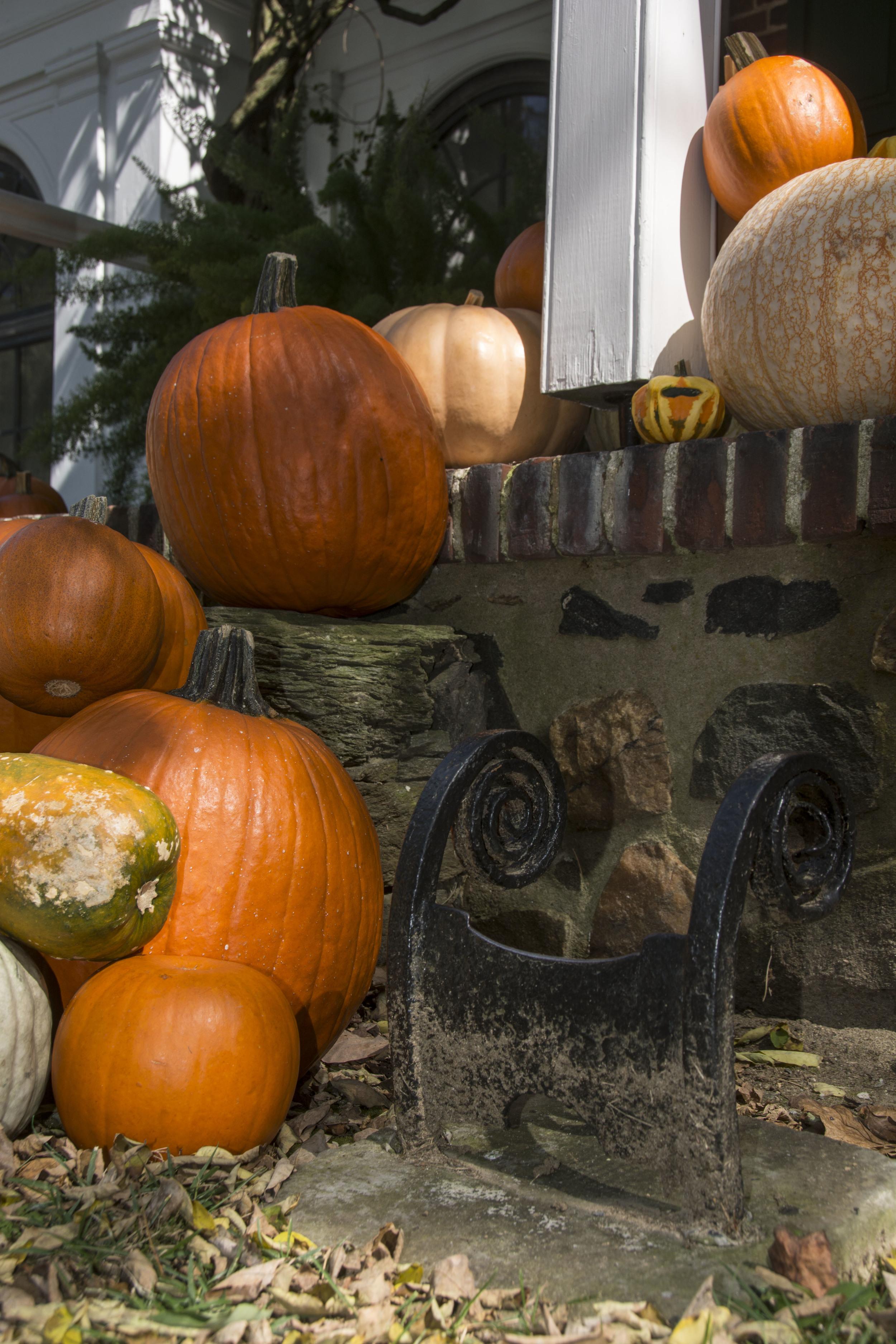 Longwood house pumpkin display