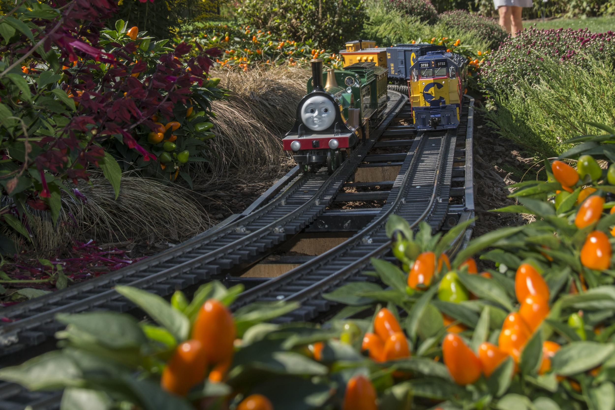 Longwood outdoor trains