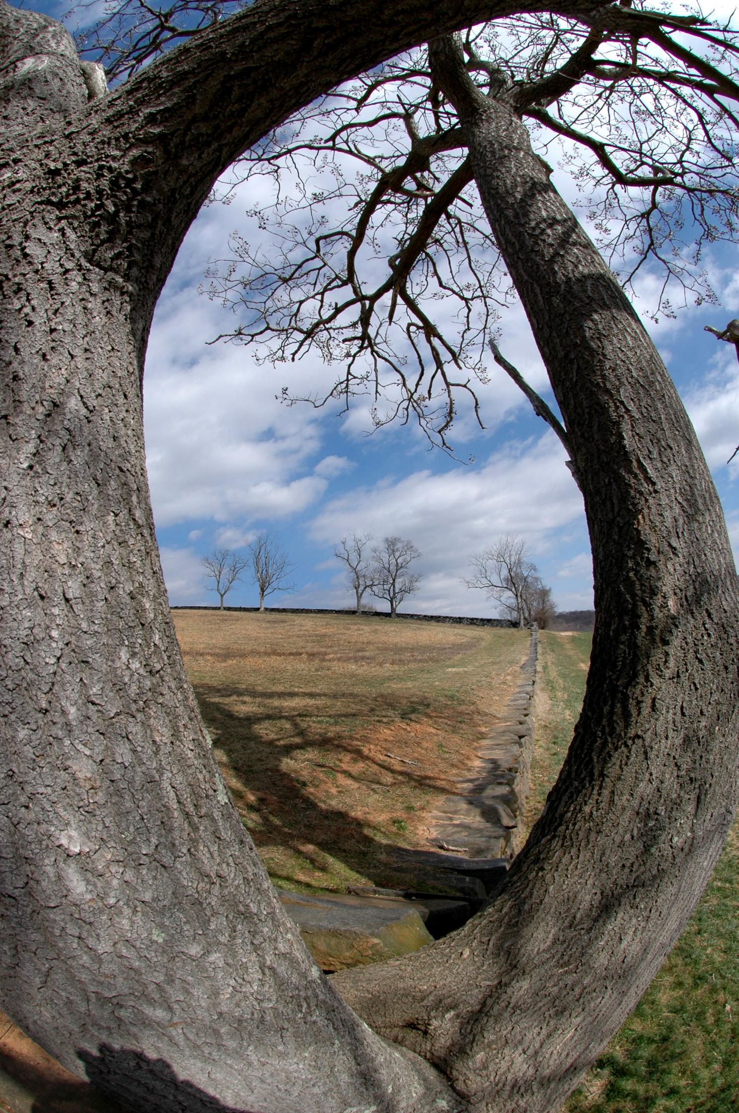 Brandywine Creek State Park