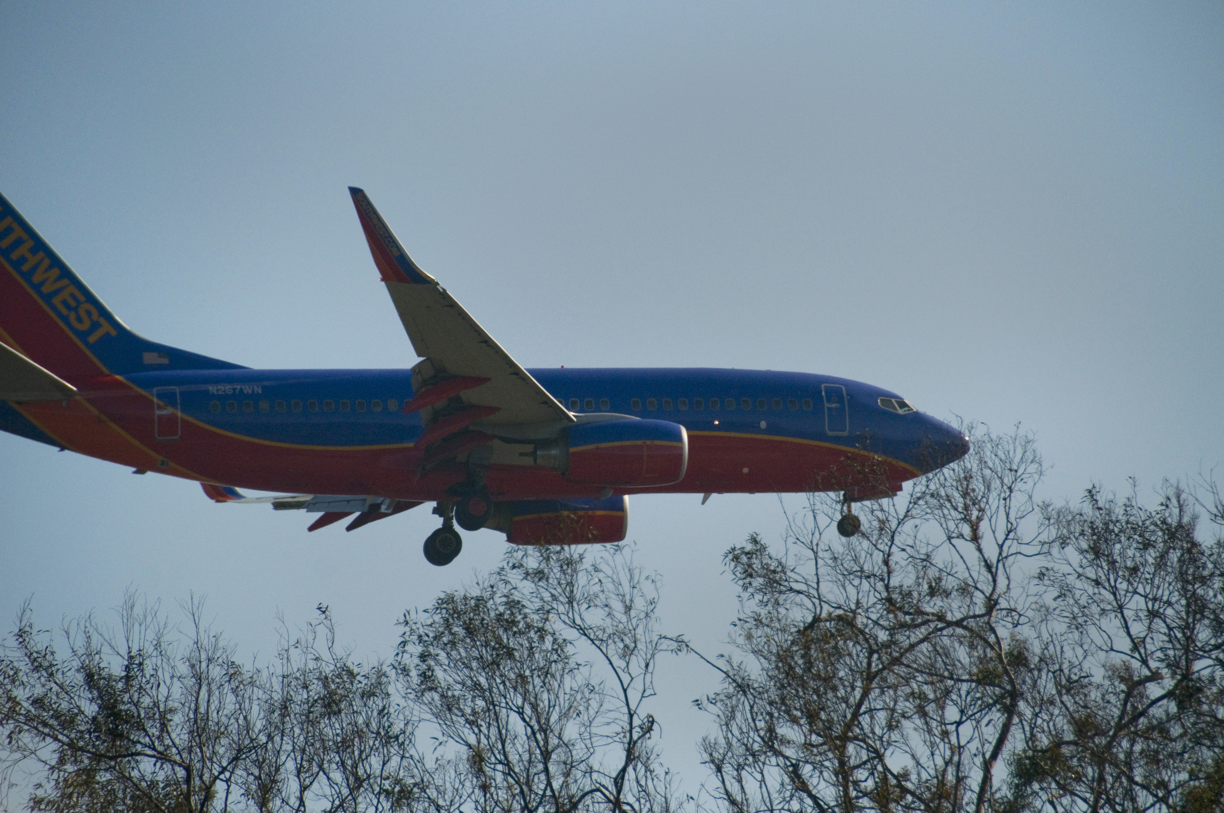 landing over Balboa Park