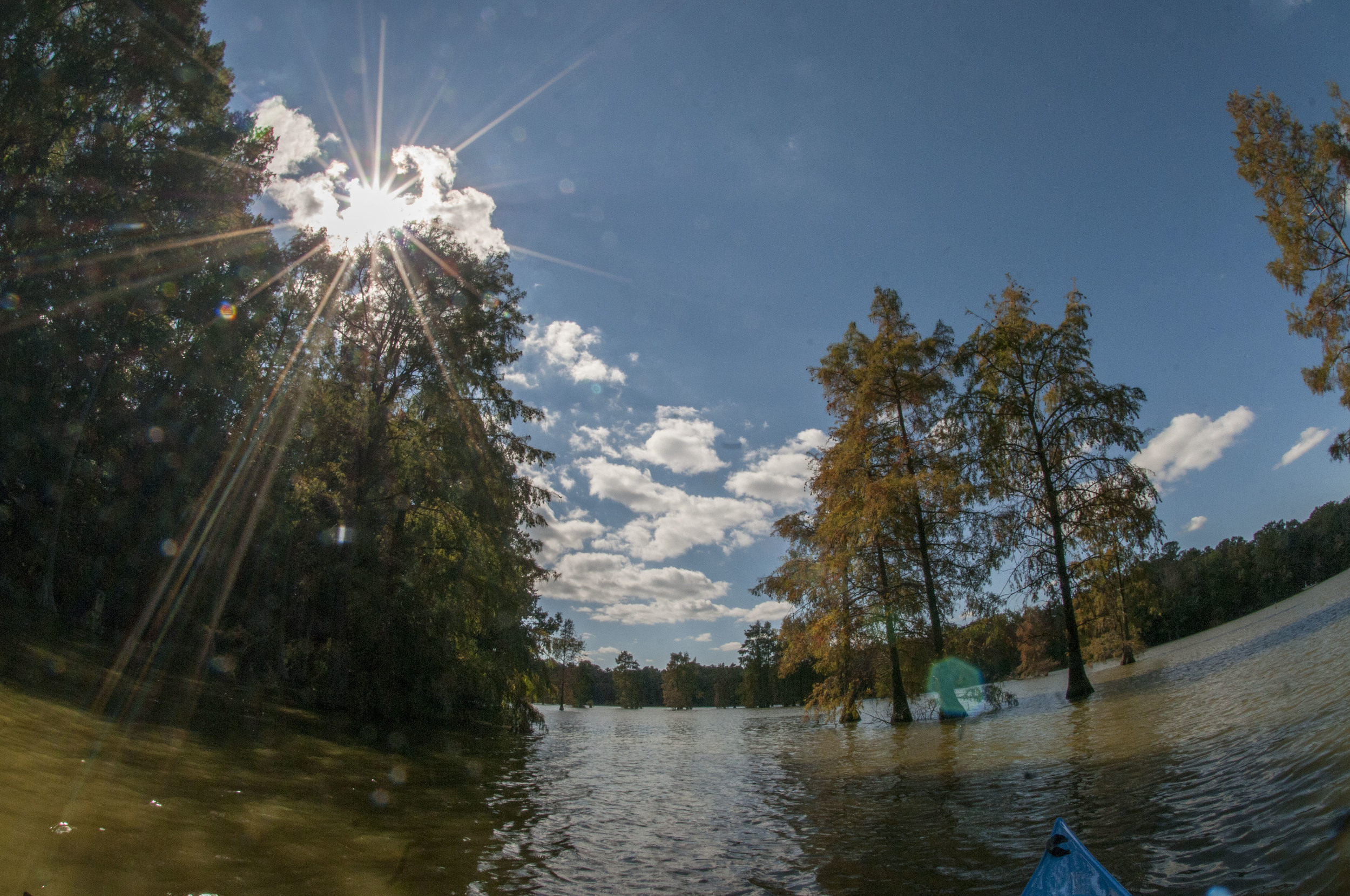 Trap Pond SP